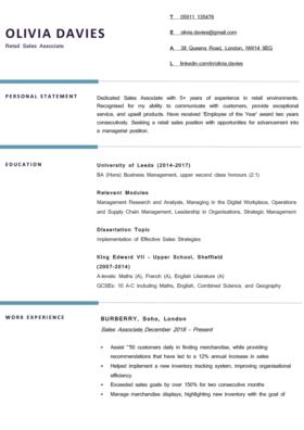 The Berkshire CV Template in blue