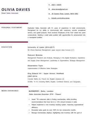 The Berkshire CV Template in burgundy