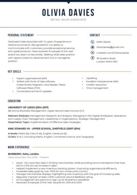 The Bold CV Template in dark blue