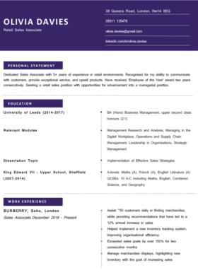 The Brixton CV Template in purple