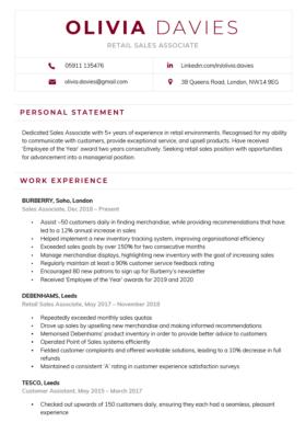 Contemporary CV Template in burgundy