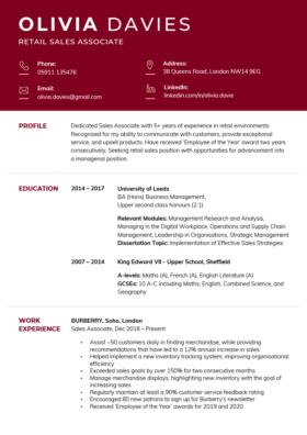 The Corporate CV Template in burgundy