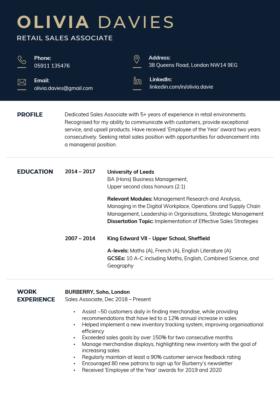The Corporate CV Template in dark blue