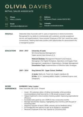 The Corporate CV Template in green