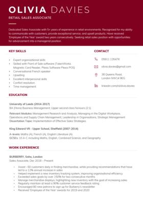 "The ""Dynamic"" CV Template in burgundy"