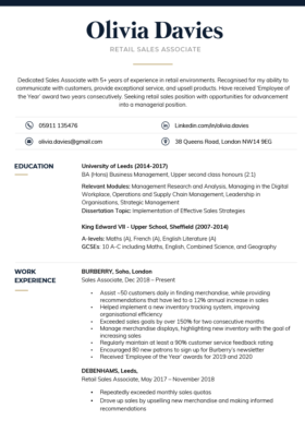 The Formal CV Template