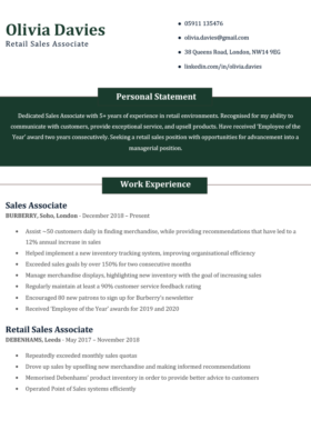 The Simple CV Template in green