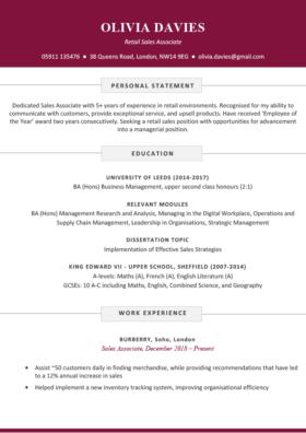 The Soho CV Template in burgundy